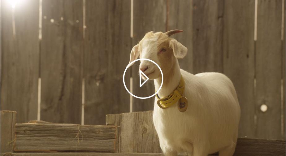 Juicy GOAT - 9.4 million impressions